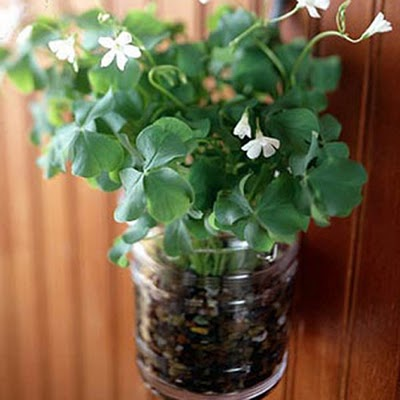 St. Patrick's decor ideas remodelaholic