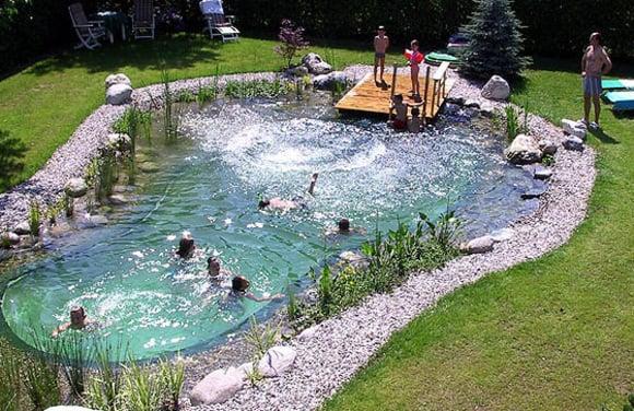Kim Vallee natural swim pond