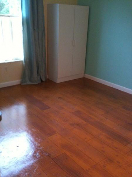 How to Paint a Concrete Floor  Construction  Haven Home