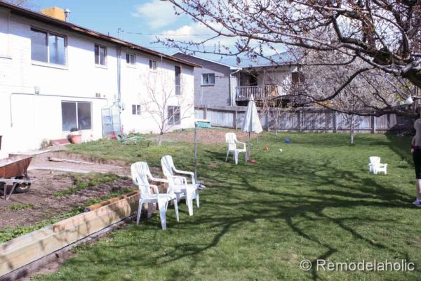 backyard before pictures