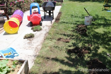 Mulch Weed Control Around Trees-13