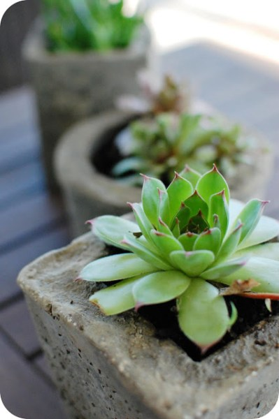 concrete hypertufa pots, 33 Shades of Green on Remodelaholic