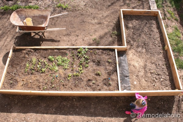 custom raised garden boxes-18