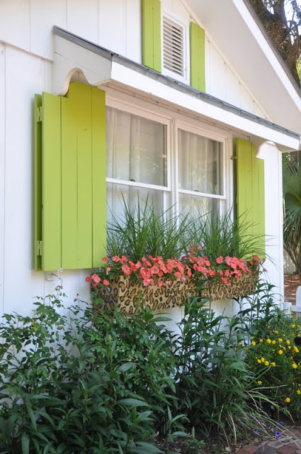 exterior shutters - colorful cottage shutters with awning and window boxes, Jane Coslick