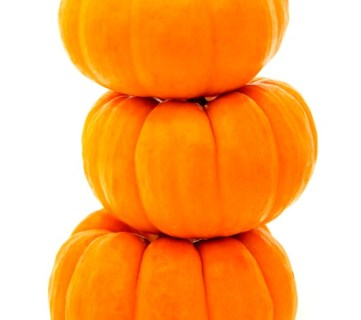 10 No-Carve Pumpkin Ideas via Tipsaholic.com