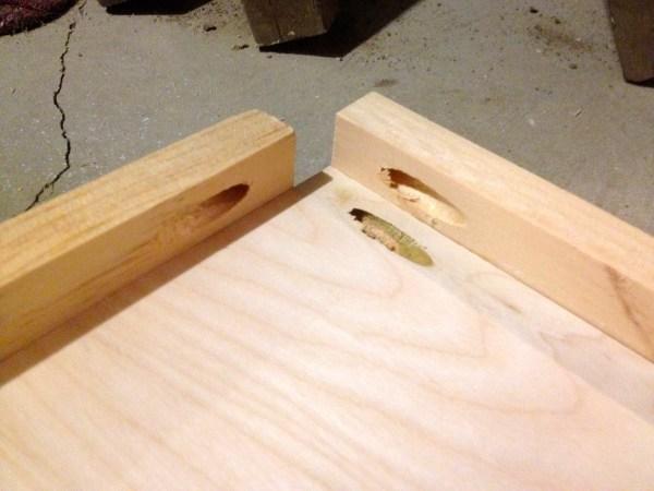 corner pocket holes, open media shelf