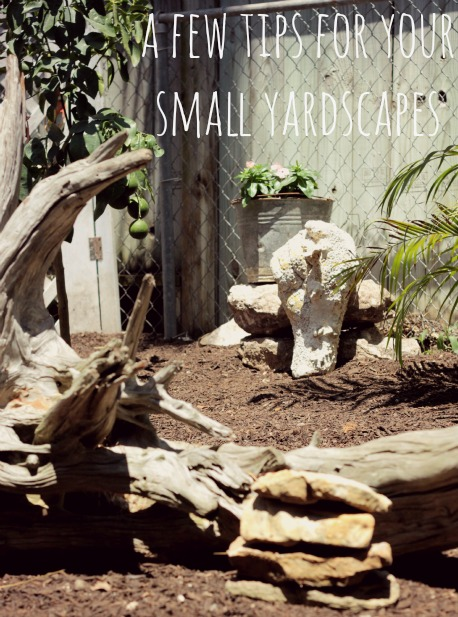 small yard tips