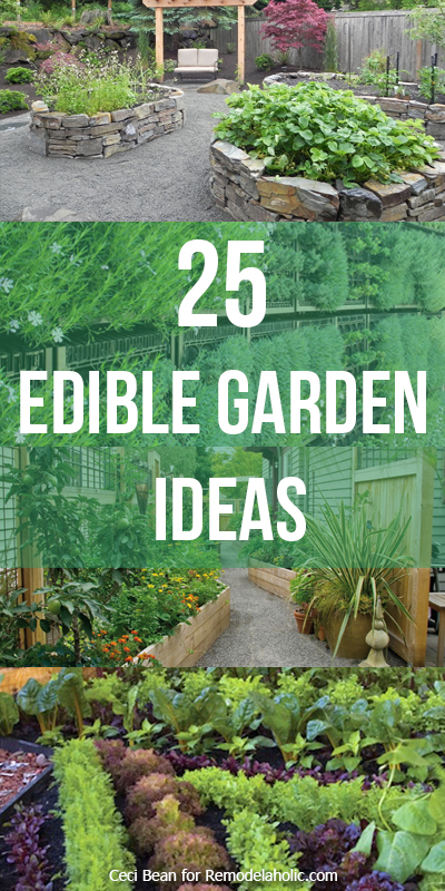 25 Edible Garden Ideas -- grow herbs and vegetables no matter the size of your yard @Remodelaholic