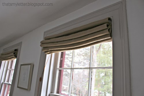 Lined Roman Shades By Jaime Costiglio