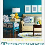 Turquoise-Pin-pic-450x541