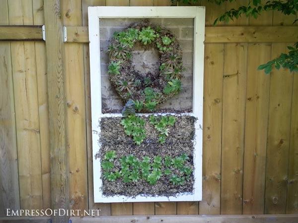 via Empress of Dirt - old window as a succulent planter - via Remodelaholic