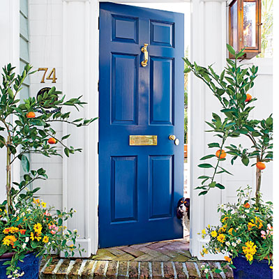 Beautiful Doors - front door in Benjamin Moore Gentleman's Gray via Southern Living