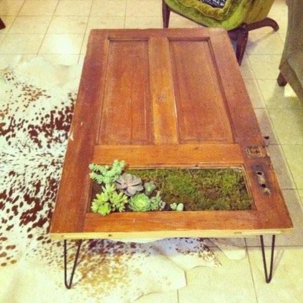 coffee-table-succulent-planter-rebuilding-exchange
