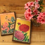 vintage-seed-packet-wall-art-apieceofrainbow (1)