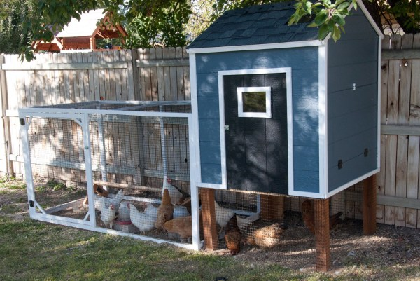 from The Real Housewives of Riverton - the blue looks great and lots of space for the chicken run under the coop