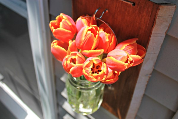 Tulips-In-A-Vase