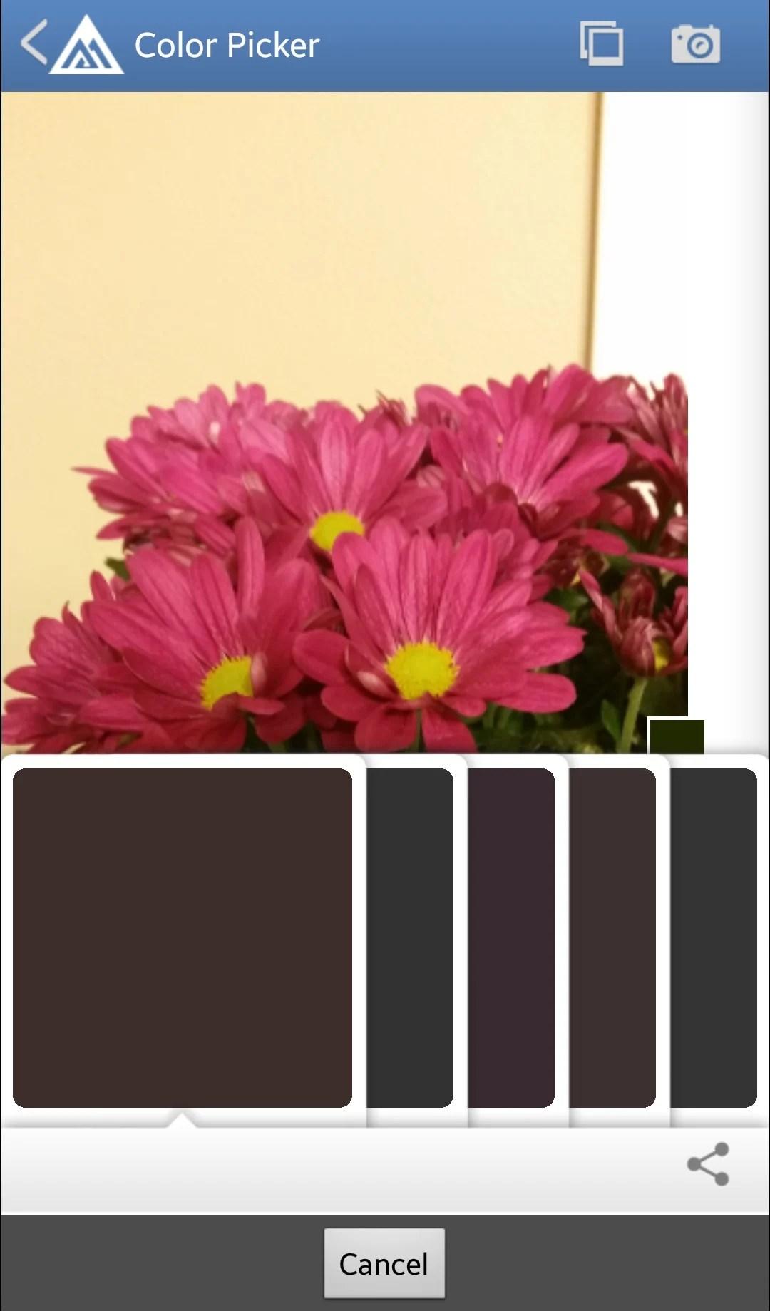 Benjamin Moore Paint Color Picker