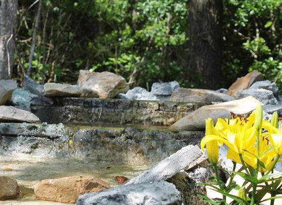 How to Create a Relaxing Backyard