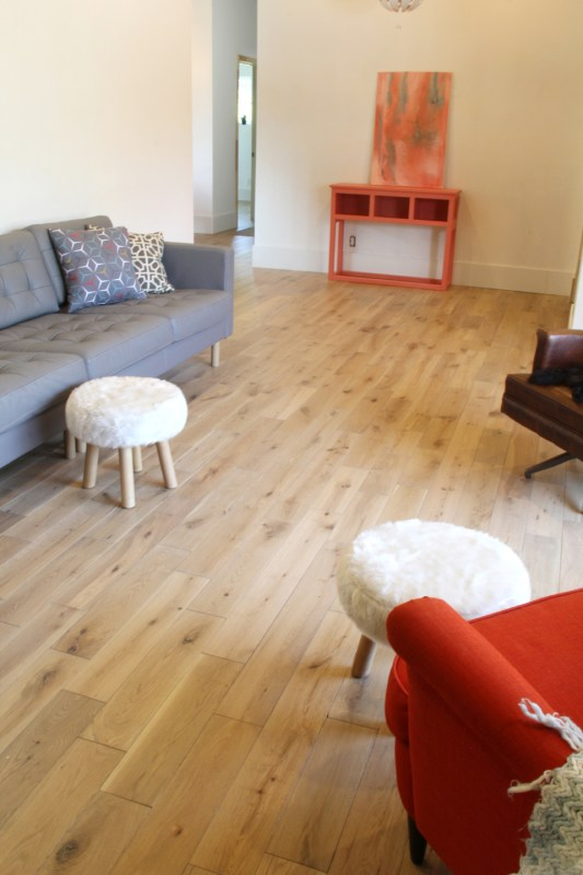 Birch House LIving Room 006