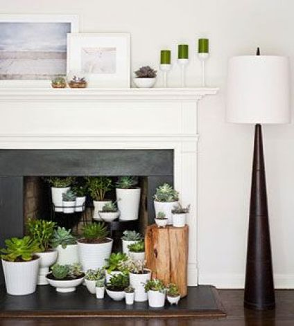 What to do with a non-functioning fireplace -- white pots and planters for succulents