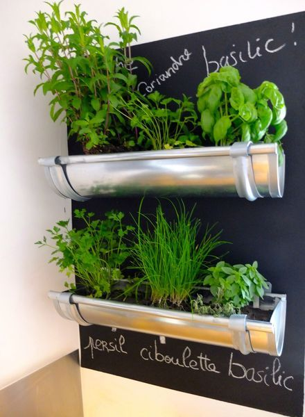 One of the classiest indoor herb gardens I've ever seen! Metal rain gutters on a chalkboard wall. Simple but chic