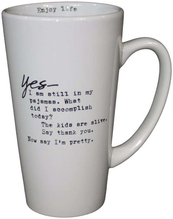 This is the BEST mom mug EVER! Especially for stay at home moms who hear 'what did you do all day' all the time