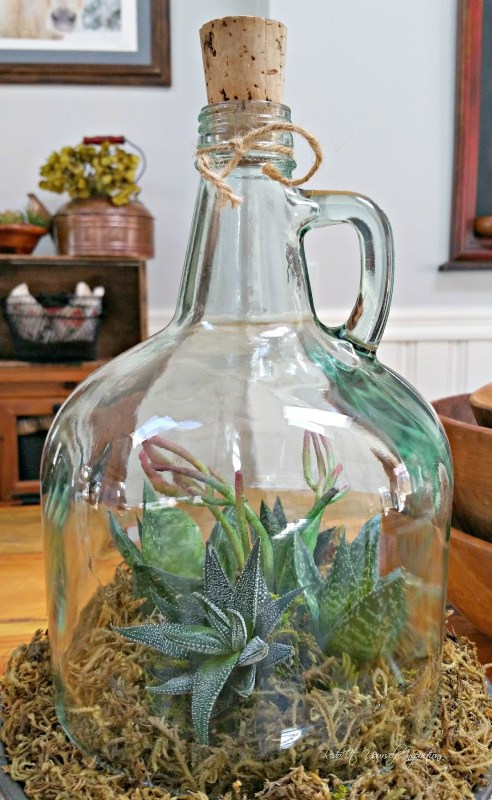 cloche garden terrarium made from an old glass bottle, Redo It Yourself Inspirations