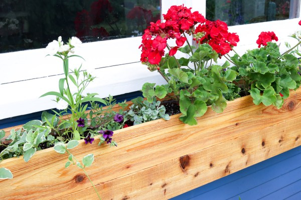 Custom Cottage Window Box-5