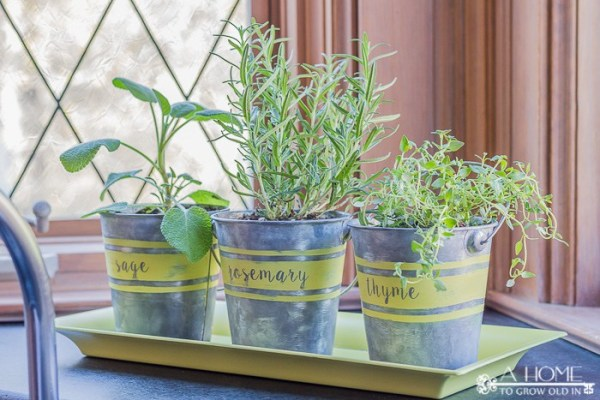 how to age cheap metal buckets for an herb garden, by A Home To Grow Old In