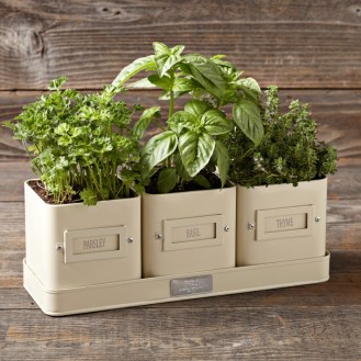 vintage kitchen charm herb pots