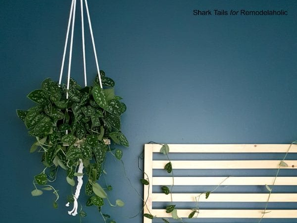 Easy Hanging Planter DIY By Shark Tails On Remodelaholic