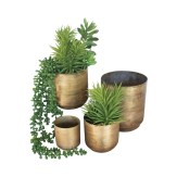 brass plant pots