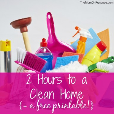 2 Hours To A Clean Home 2