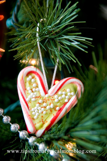 19 Diy Edible Christmas Ornaments Tips From A Typical Mom Remodelaholic