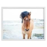 Southwestern Midcentury Horse Art