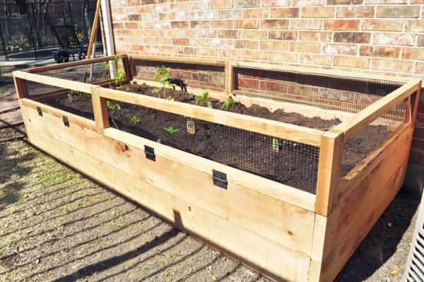 Raised Vegetable Garden, Stacy's Savings
