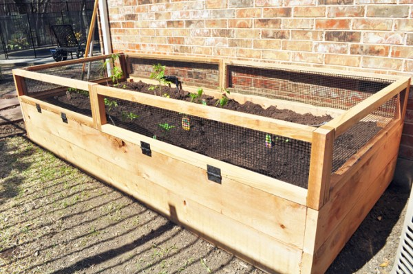 Raised Vegetable Garden, Stacy's Savings
