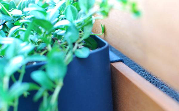 IKEA Kitchen Organizing Bins Turned Outdoor Planters On A Wood Slat Vertical Garden Wall, The Garden Glove Featured On Remodelaholic