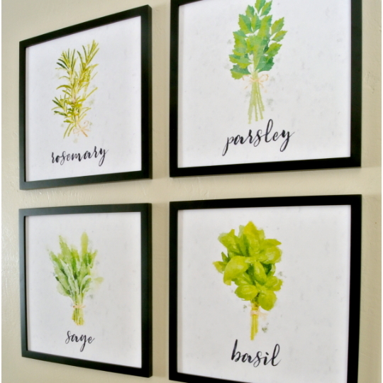 Green Wall Art for the Kitchen: Painted Herbs Framed Wall Collage In Black Frame And White Background