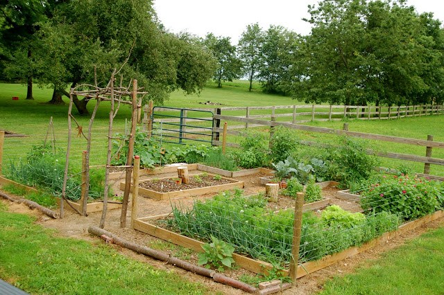 Remodelaholic 10 Diy Vegetable Garden Ideas For Raised Garden