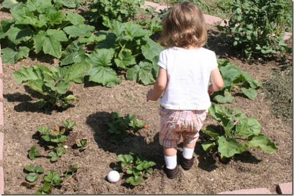 DIY Vegetable Garden Ideas With Kids, Remodelaholic