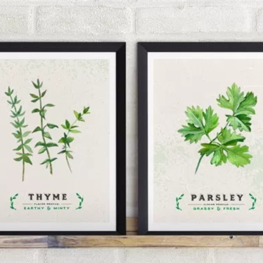 Kitchen Printables Culinary Herb Series Showing Thyme And Parsley In Black Frames