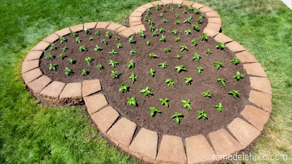 Diy Mickey Flower Bed For Home Landscaping #remodelaholic