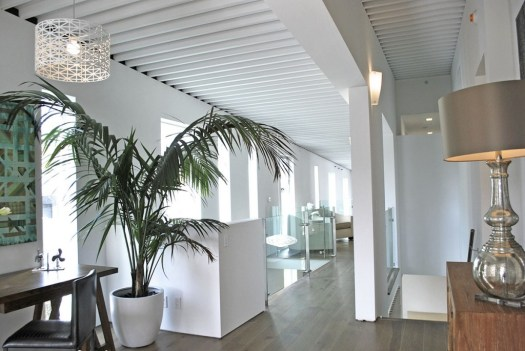 plants-as-part-of-interior-decor