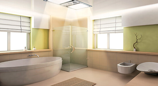 Natural  Lighting, Master Bathroom Design