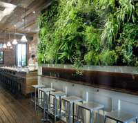 A Green Wall Grows in Brooklyn: Colonie Restaurant ...
