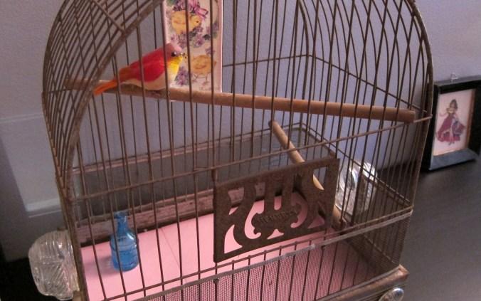 blogging_birdcage2