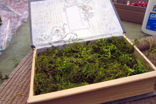 Dried Moss as base for fairy garden.