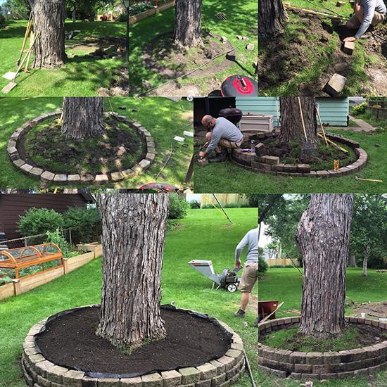 Diy Stacked Herb Garden: DIY Tree Ring & Herb Garden