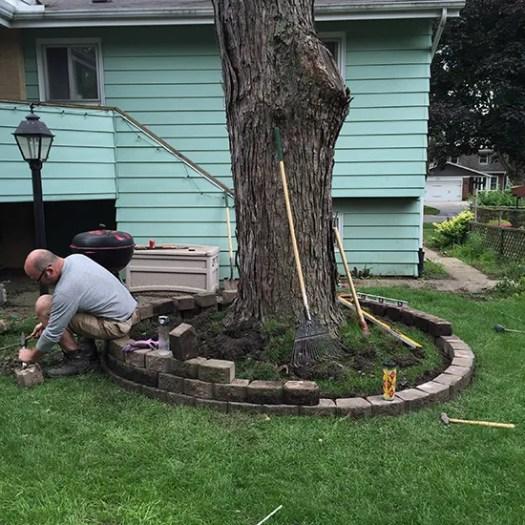 blog-treering4